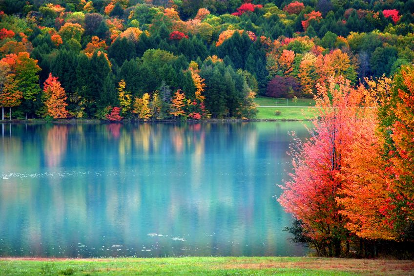 Maine Landscaping